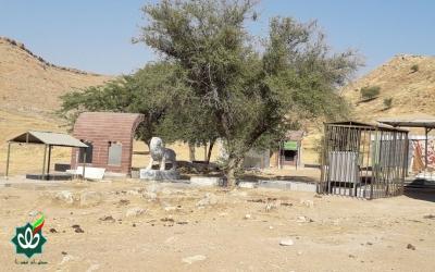 گلزار شهدای روستای گاومیر