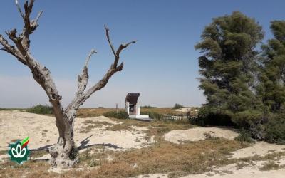 گلزار شهدای روستای کوت مهنا