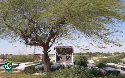 گلزار شهدای روستای دریهک